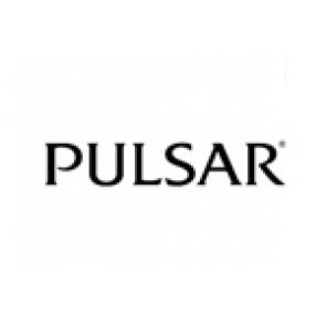 Pulseira de relógio Pulsar 70P8JG / Y182 6d40 Aço Aço